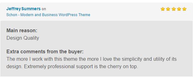 Schon WP Theme Reviews